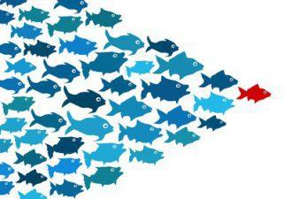 8 provas de que líderes humildes são muito mais eficientes