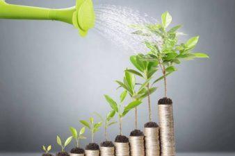 Como escolher o melhor fundo de investimento para você